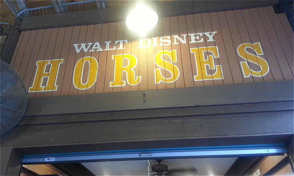 Hoop-Dee-Doo Musical Revue Walt Disney World Resort x Spiki 7